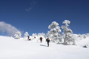 Ciaspolata, una delle nostre attività invernali sul Pollino