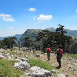 Trekking, una delle nostre attività sul Pollino