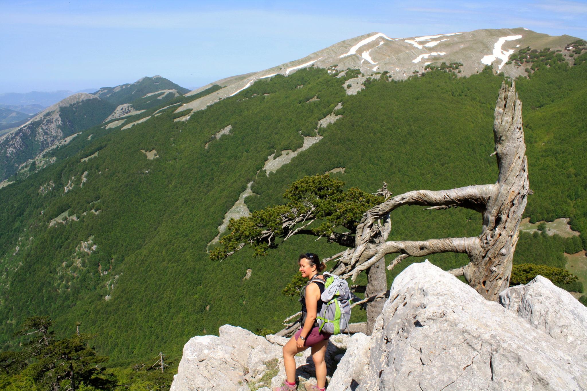 Trekking sul Pollino, una delle nostre attività